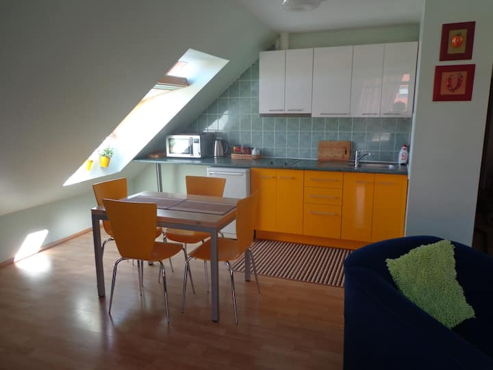Apartment in the heart of Nida