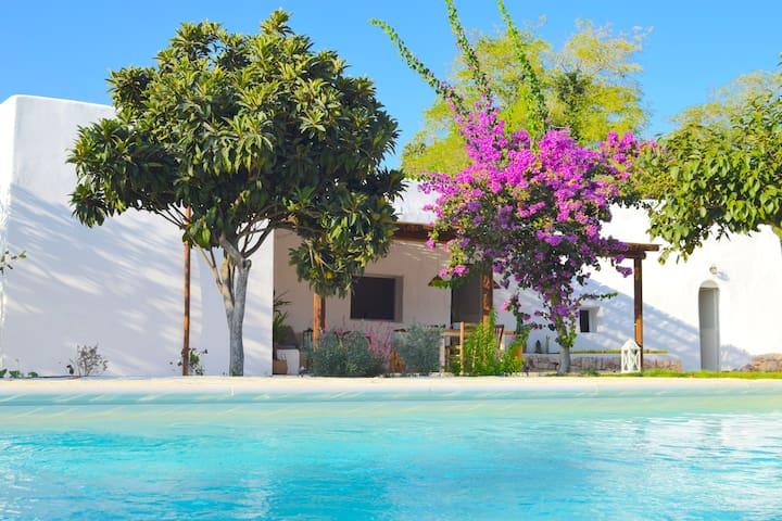 Blue Gecko Villa Relax & Wellbeing.