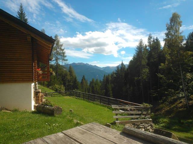 Val Piomban, dove regna la natura incontaminata - Province of Trento