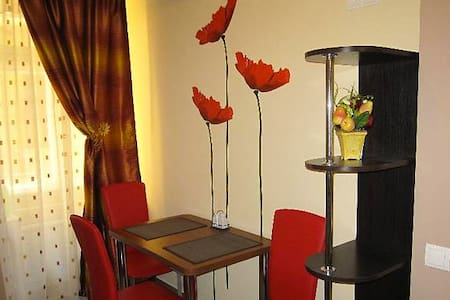 1 room apart in Lvov for  EURO 2012