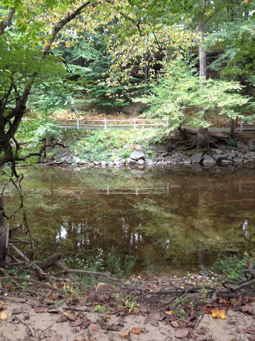 Hiking and biking in Pennypack Park