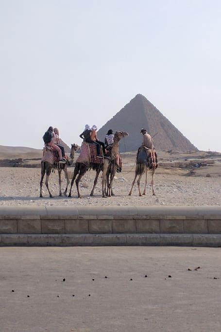 Camel riding at the Pyramids