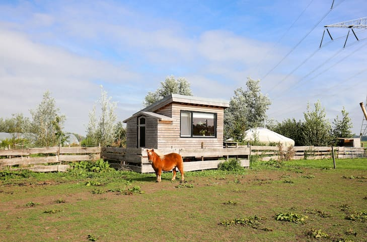 Tiny House on Organic Dairy Farm