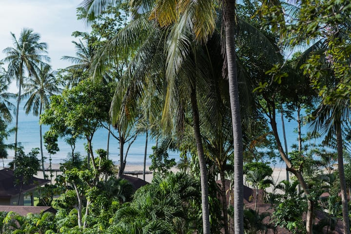 Deluxe Forest View Private Beach