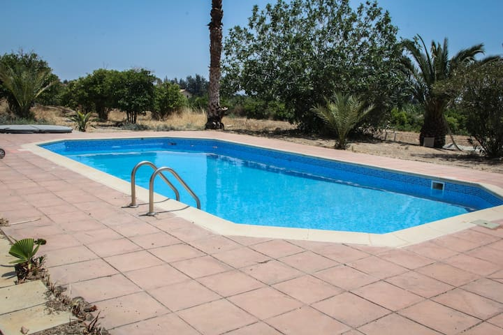Palm House: Pool & Jacuzzi Villa in countryside - Paphos - Villa