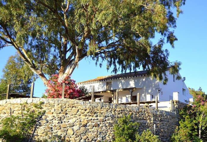 Villa sleeps 6 to 10 + extra guests up to 22 - Malaga - Villa