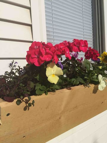 Charming flower boxes adorn the front windows