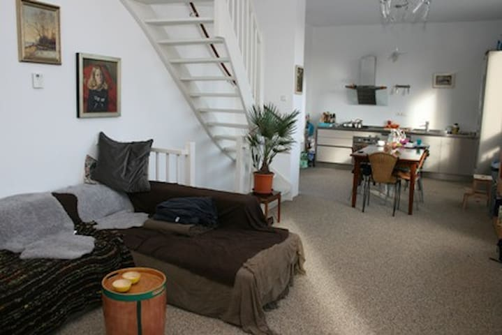 zeer ruim licht en modern huis in Amsterdam IJburg