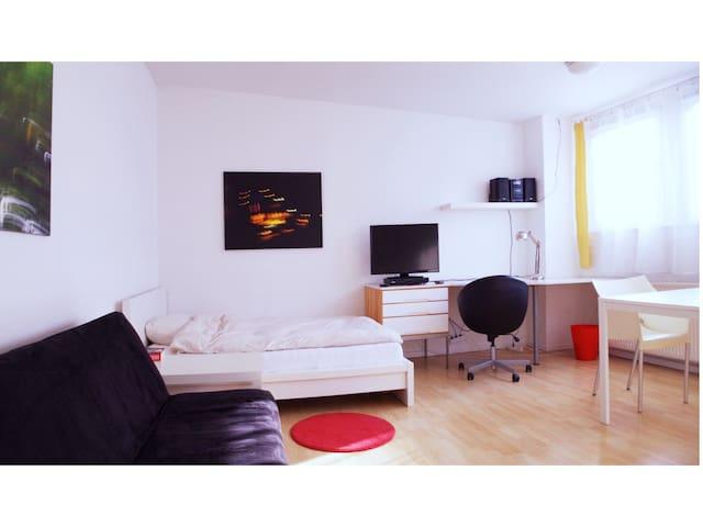 Geräumiges Zimmer in zentraler Lage - Braunschweig - บ้าน