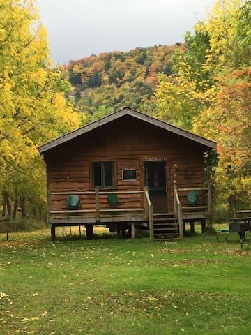 """Catskill Mt """"Algonkin"""" Cabin"""