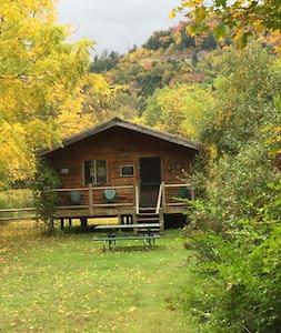 """Catskill Mountain """"Oquago"""" Cabin - Downsville - Mökki"""