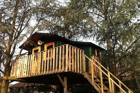 casa sull'albero  - Bascapè - Hus i træerne