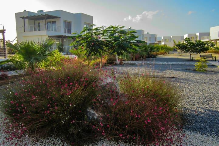 2-bd. apartaments in Caesar Beach  - Yeni İskele