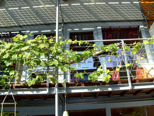 Solar City Freiburg - Energy+ house - Fribourg - Bed & Breakfast