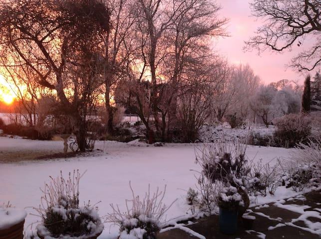 Wonderful Winter wonderland @thegardenhouse