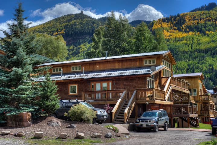 1BR with loft-Town of Telluride - Telluride - Apartment
