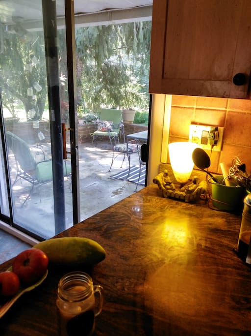 My kitchen counter and door to patio. Also on counter veggies from garden