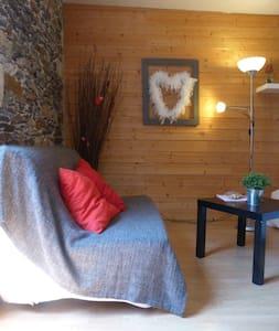 studio plein centre ville de Nantes - Nantes - Appartement