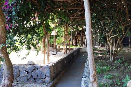 Casa con giardino panoramicissimo - Serrara Fontana - Lägenhet