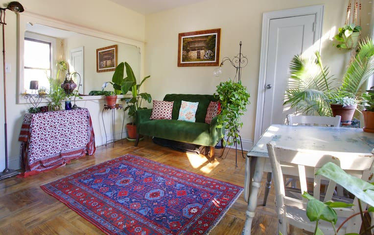 Sunny Apt. in Historic Fort Greene