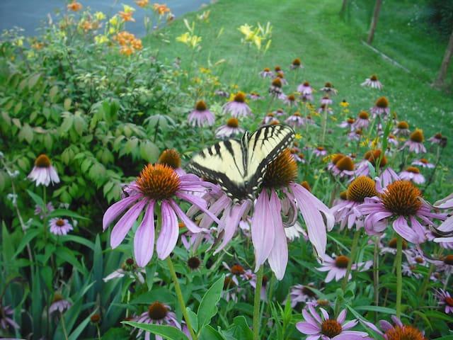 Nature Lover's Paradise , Poconos