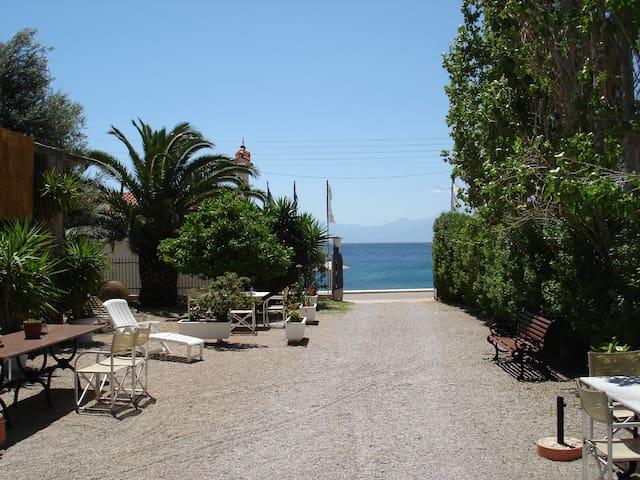 ΟΑSIS STUDIOS - GALAXIDI - Παραλία Αγίων Πάντων - Domek parterowy