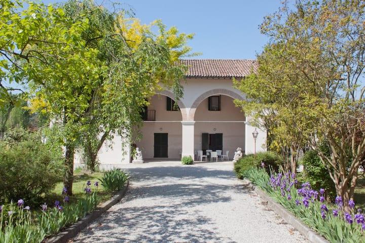 Villa Petrarca 2 - Relax,swim,eat,explore, repeat!