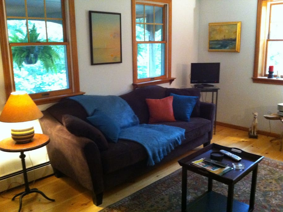 Cozy Open Concept Parlor, Apt sized couch. Cable TV