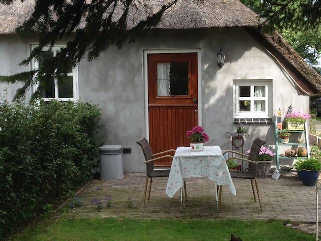 vakantiehuisje aan de IJssel - 's-Heerenbroek - Casa
