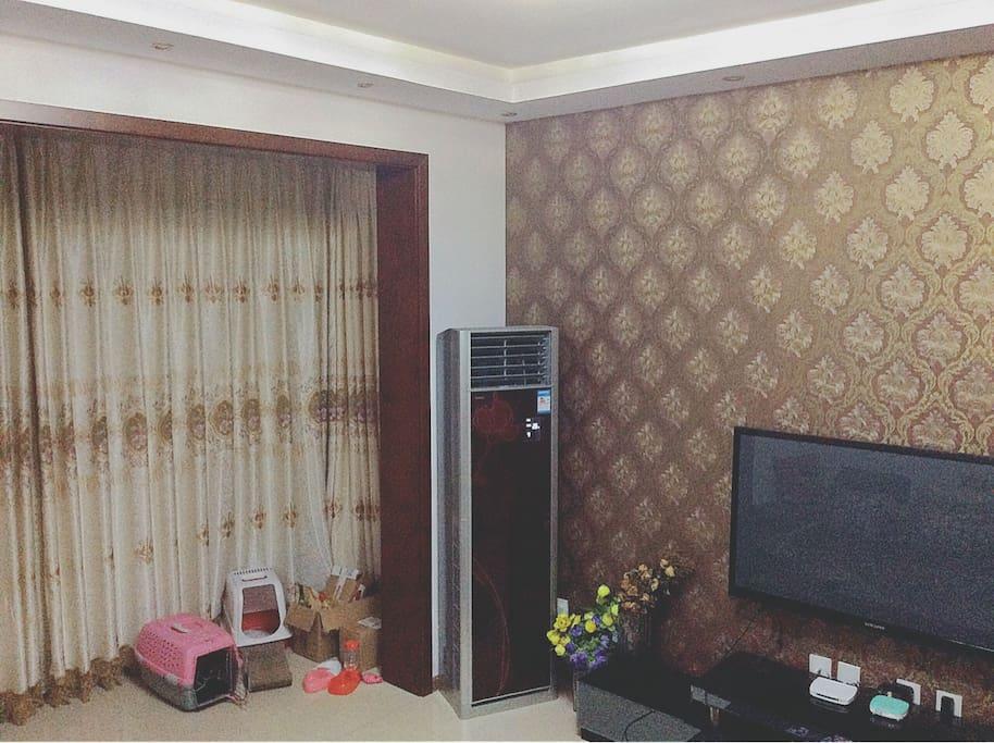 这是客厅啦,你可以看到窗帘旁主人的配套设施,哈哈~
