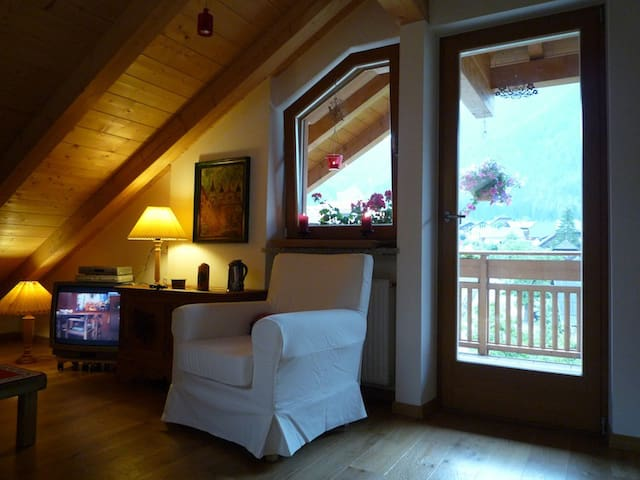 Charming penthouse apartment  - Rasun di Sopra