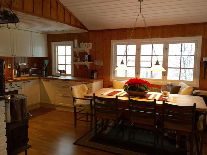 Cosy, traditional cottage, 3 bedrooms in Hemsedal