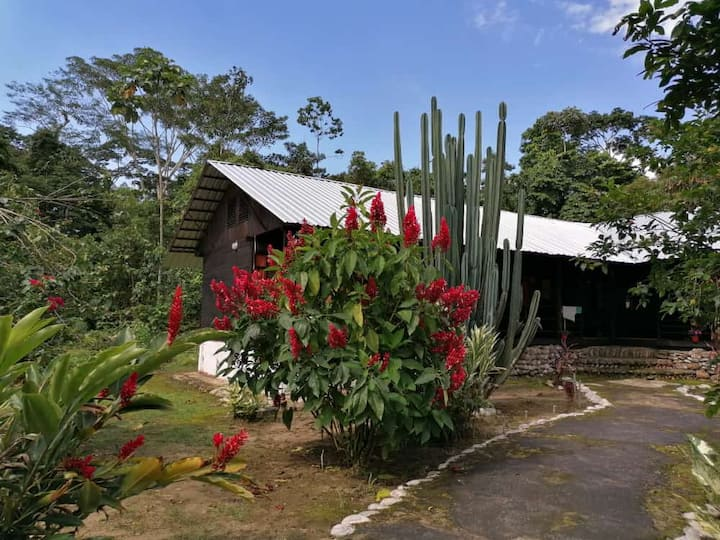 HABITACIONES EN ISLA PRIVADA EN AMAZONIA