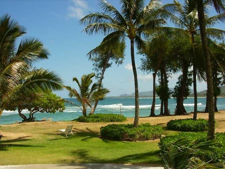 Ocean View 102