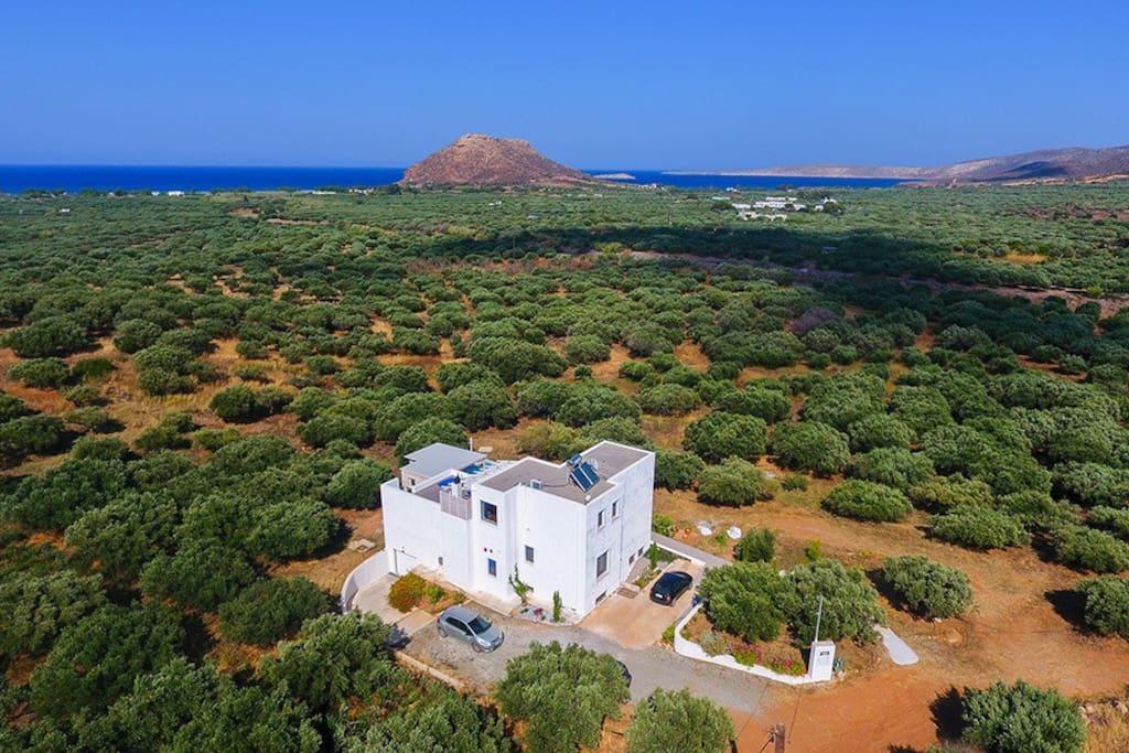 """La maison dans son environnement avec la plaine d'oliviers, les plages qui entourent le """"Kastri"""""""