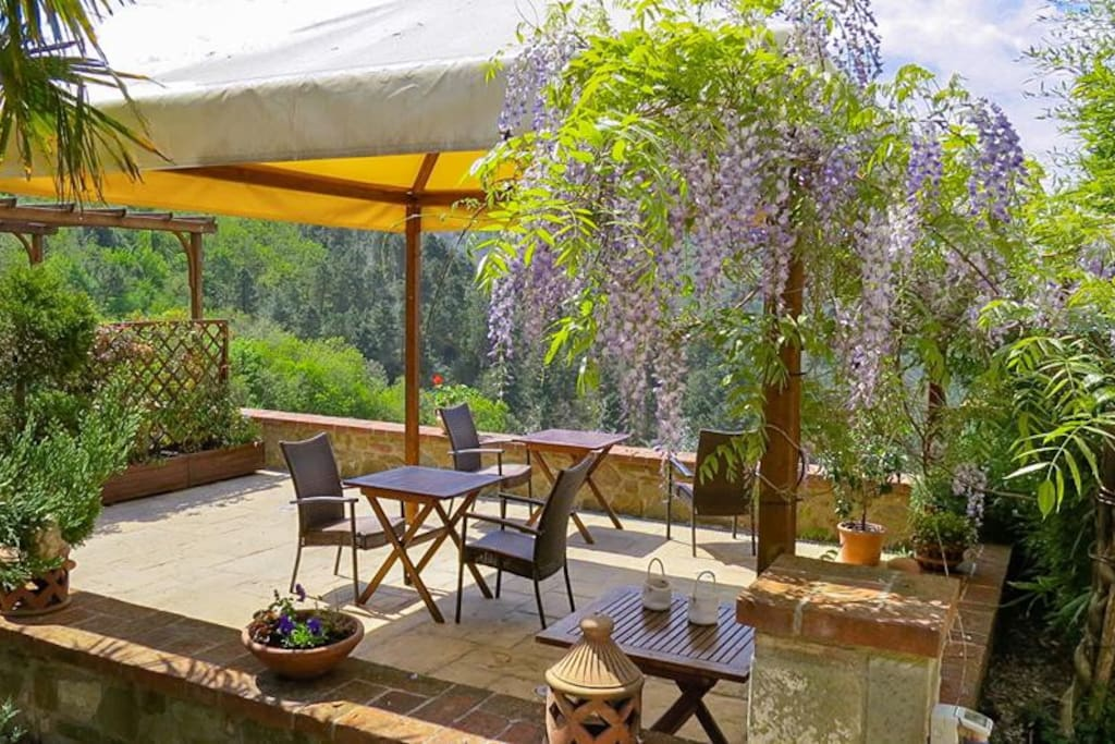 The guest terrace