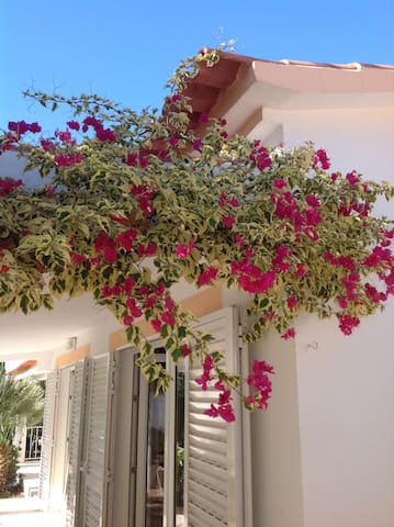 Villa-kamer in  een rustieke mooie omgeving. - Cerro do Ouro - Villa