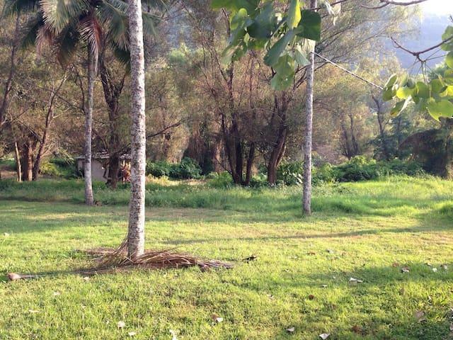 Granja a con vista al lago - Villa Canales - House