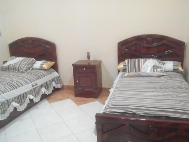 Sheep and comfortable room
