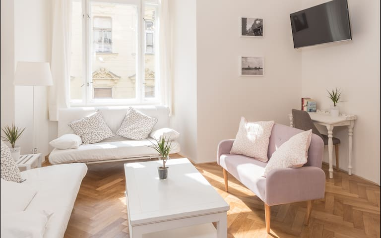 NEW STYLISH LARGE apartment in the Old Town center
