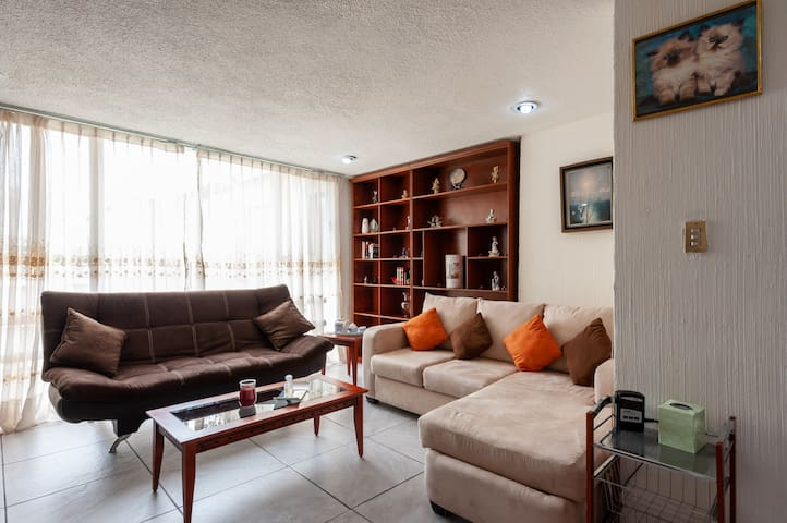 Fantastic and Centric Apartment in Del Valle