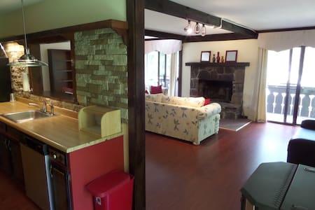 Cozy 2BD apartment w/ fireplace - Stony Creek