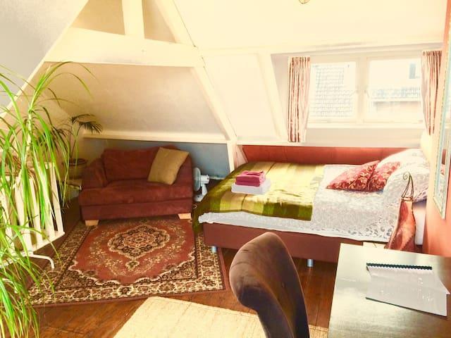 Oriental attick with flowery balcon - ユトレヒト - タウンハウス