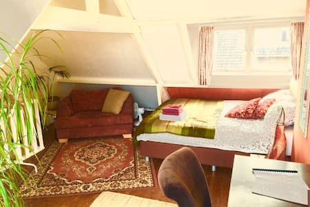 Oriental attick with flowery balcon - Utrecht - Townhouse