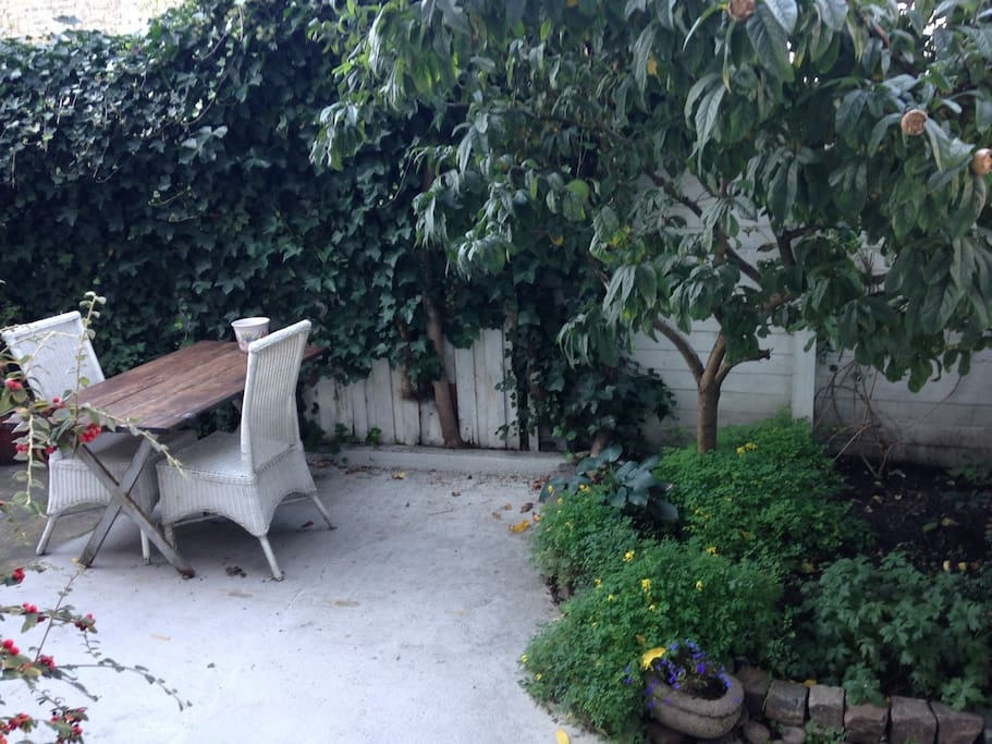 Backyard space with a little garden ** update coming up, did some stuff on the garden **
