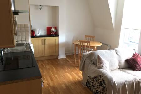 Bright, modern flat in the heart of Twickenham - Twickenham - Wohnung