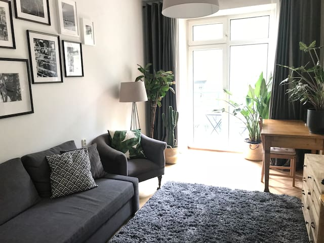 Cosy flat in the city center