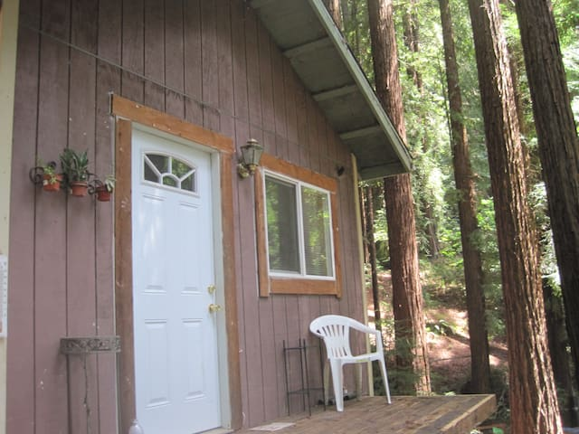 Bio Chic Cabin in the Redwoods - Watsonville - Blockhütte