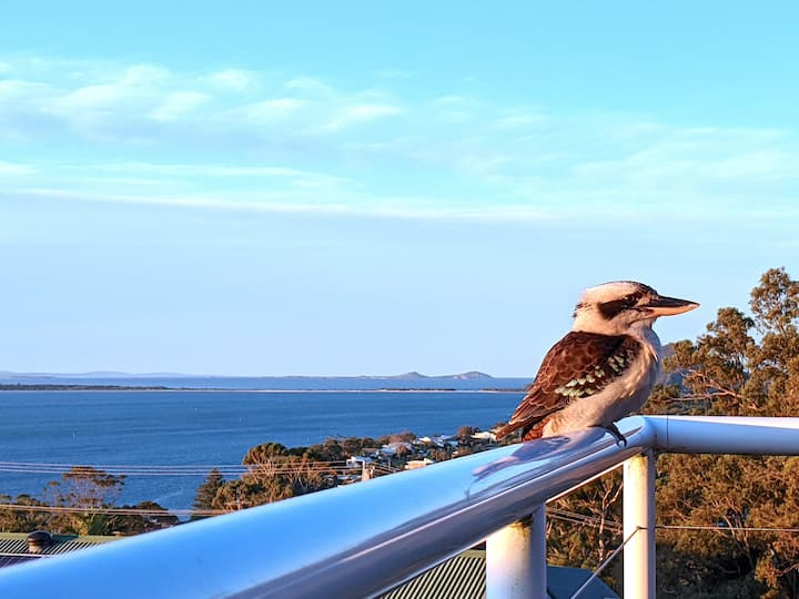Pacific Waters - Unbeatable Views of Port Stephens