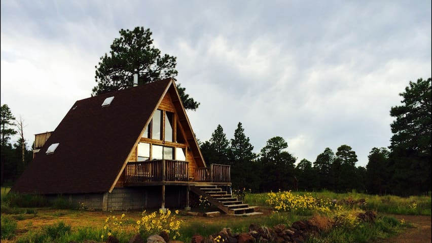 A-Frame Mountain View Cabin in a National Forest - Флэгстаф - Бунгало